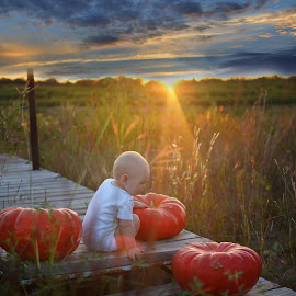Autumn by Valeriya Hill - Babies & Children Babies ( pumkins, nature, sunset, fall, baby )