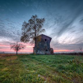 Musile Di Piave - Old House - Yellow And Green Grass by Fa Ve - Landscapes Prairies, Meadows & Fields ( old house, blue sky, tree, red sky, grass, sunset, veneto, cloud, musile di piave, italy )