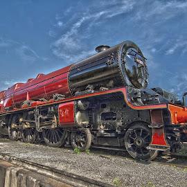 by Steve Adams - Transportation Trains ( steam train, princess margaret rose )
