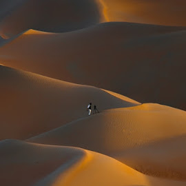 Find a better place by Adeeb Alani - Nature Up Close Sand