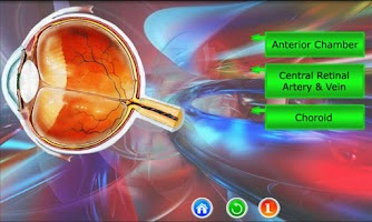 Screenshot of BioIQ: Biology Picture Game