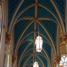 Church interior savannah by Debra Graham - Buildings & Architecture Places of Worship ( savannah, church )