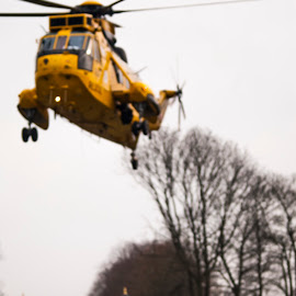 RAF Sea King at RAF Cranwell by Ciaran McFalls - Transportation Helicopters ( helicopter, cranwell, royal air force, freezing, military )