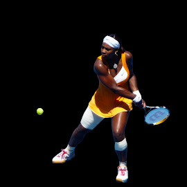 Serena by David Freese - Sports & Fitness Tennis ( tennis )