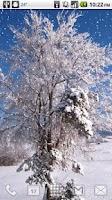 Screenshot of Falling Snow Winter Desktop