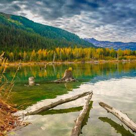 Portage Lake, AK by Leslie Nu - Nature Up Close Water ( water, hills, water reflection, mountains, waterscape, alaska, landscape, treea, portage lake )