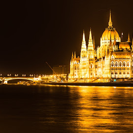Golden Parliament by Franco Beccari - Buildings & Architecture Public & Historical ( lights, parliament, reflection, building, night lights, night, gold, river )