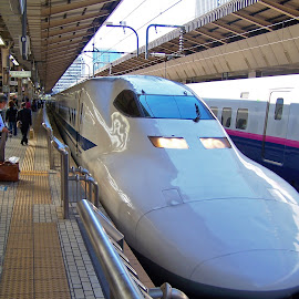 shinkanzen by Victor Eliu - Transportation Trains ( land, tokyo, train, central station, high speed, transportation, device )