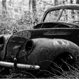 Found in the Woods by Raquel Gonzalez - Transportation Automobiles ( old cars, woods )