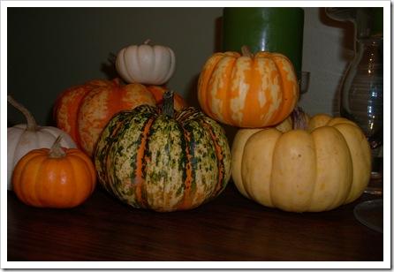pumpkin day 019