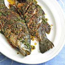 Barramundi with Moroccan spices