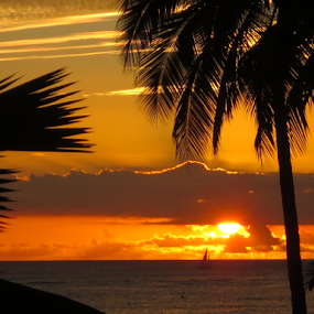 Sunset at Waikiki Beach by Rita Colantonio - Landscapes Sunsets & Sunrises (  )
