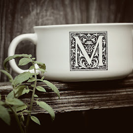 M by Molly Chalfin - Artistic Objects Cups, Plates & Utensils ( m bowl plant )