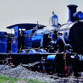 3016 in the yard by Peter Keast - Transportation Trains ( railway, engine, steam train, transportation )
