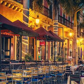 Mexican Plaza by John Matzick - City,  Street & Park  Street Scenes ( mazatlan, vintage, mexico, tropical, street, palm trees, night, exotic, restaurants, historic, quaint )