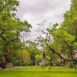 Support your local branch by Jack Brittain - City,  Street & Park  City Parks ( england, uk, london, tree, green, landscape, garden )