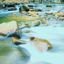 Babagon River, Sabah - 1 by Low SuehLeong - Nature Up Close Water