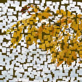 Fall Scene by Barbara Langfeld - Abstract Patterns ( abstract, squares, patterns, treatment, fall )
