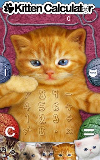 Kitten Calculator