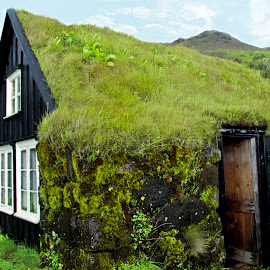 Sod House in Iceland by Linda Reyer - Buildings & Architecture Homes (  )