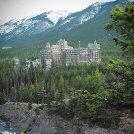 Banff Springs Hotel overlooking the Bow River by Lena Arkell - Buildings & Architecture Office Buildings & Hotels ( national park, canada, alberta, banff, river )