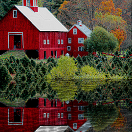 Big Red Barn Reflection by Janet Lyle - Buildings & Architecture Other Exteriors ( barn, autumn, foliage, fall )