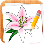 Wie Blumen zeichnen