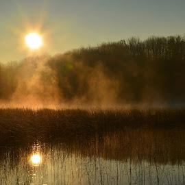 Morning Reflections by Gloria Straight - Landscapes Sunsets & Sunrises ( golden hour, sunset, sunrise )