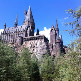 Hogwarts school of witchcraft and wizardry. by Carrie Nephew - Buildings & Architecture Other Exteriors