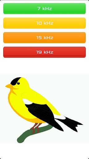 玩娛樂App|鳥哨免費|APP試玩