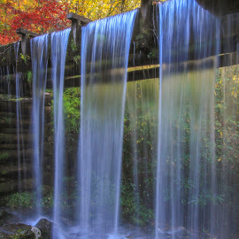 Overflow by Frank Kenens - Landscapes Waterscapes