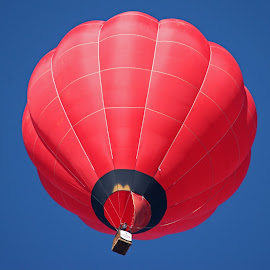 Red Balloon by Dirk Luus - Transportation Other ( sky, red, fly, hot, air, balloon )