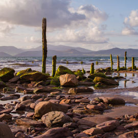 Ross Beach, Kerry, Ireland by Jozef Mäsiar - Landscapes Beaches ( sea, sandstone, seascape, beach, landscape )