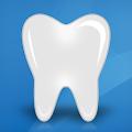 Free Download Dental Anatomy APK for Samsung