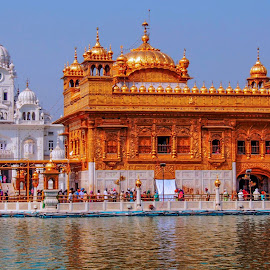 Golden temple by Kuldip Jaswal - Buildings & Architecture Places of Worship ( summer, worship )