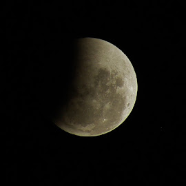 The Partial Lunar Eclipse by Mark Hurkmans - News & Events World Events ( moon, news, events, eclipse )