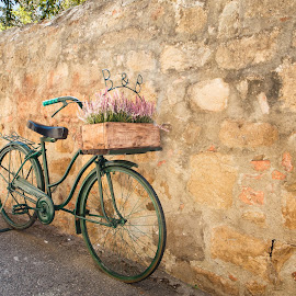 B&B by Peter Jacoby - Transportation Bicycles ( tuscany, toscana, still life, b&b, italy, bicycle )