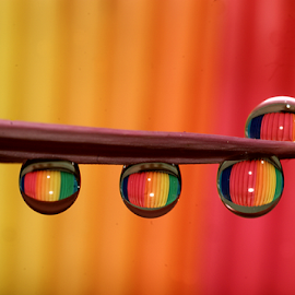 rain Bow Colors........ by Aroon  Kalandy - Abstract Water Drops & Splashes ( concept, macro, water drops, colorful, refraction, tamron )
