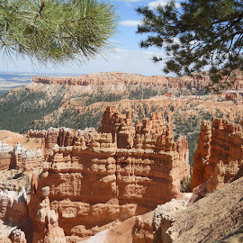Bryce Canyon  by Mary Dayton - Landscapes Caves & Formations