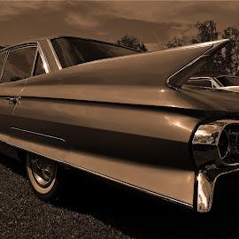 Sleeky Cadillac by Marco Bertamé - Transportation Automobiles ( car, monochrome, vintage, cadillac, oldtimer, luxembourg )