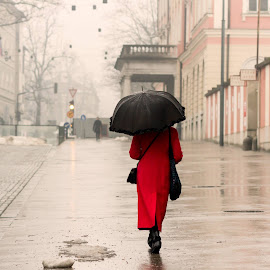 by Gregor Koščak - City,  Street & Park  Street Scenes ( rainy day, rainy, street, ljubljana, red coat, reflaction, women, people, urban, winter, umbrellas, red, girl, female, slovenia, snow, long red coat, traffic light, coat, rain, black, long coat )