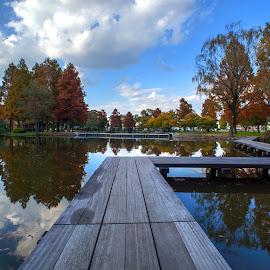 way to paradise by Kadek Lana - Buildings & Architecture Bridges & Suspended Structures ( japan, park, autumn, tokyo )