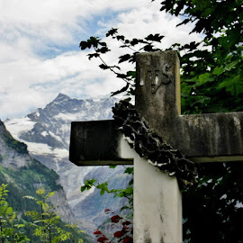 Alps Grave by Jo Ann Kuball - Buildings & Architecture Statues & Monuments (  )