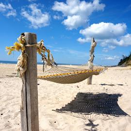 by Robert Kiss - Nature Up Close Sand ( sand, blue sky, nature, relax, path, summer, beach, landscape )