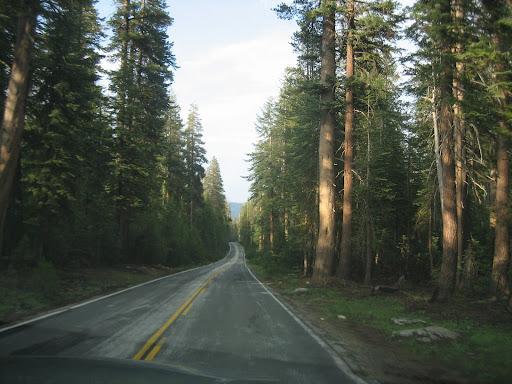 Droga na Łysą Polanę
