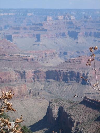 Przed wybudowaniem w 1963 r. zapory wodnej Glen Canyon rzeka niosła przez kanion dziennie 500000 ton osadu, obecnie zaś zaledwie 80000 ton.