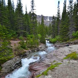 . by Greg Koehlmoos - Landscapes Mountains & Hills ( montana rockies, beautiful mountain scenery, mountain river, mountain stream, hiking, glacier national park )