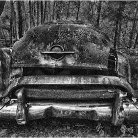 by Raquel Gonzalez - Transportation Automobiles ( rust, old cars, woods, oldsmobile )
