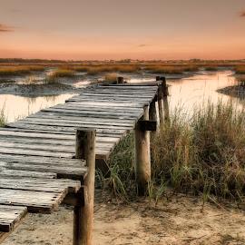 Matanzas River by Heather Allen - Landscapes Beaches ( planks, icw, old, peaceful, wood, marsh, st augustine, daybreak, soft, dawn, matanzas, florida, pier, sunrise, river )