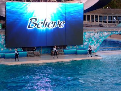 샤무 쇼 (Shamu show) - 샌디에고 씨월드(Seaworld - San diego) [범고래,killer whale,샤무,shamu,샌디에고,씨월드,수족관,수중생물,테마파크,san diego,seaworld,theme park]
